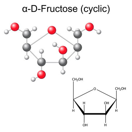 fructose: Structural chemical formula and model of fructose (alpha-D-fructose), 2D and 3D illustration, vector, isolated on white background, eps 8