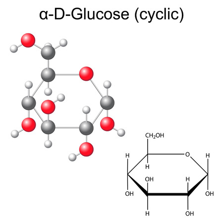 Structural chemical formula and model of glucose - alpha-D-glucose, 2D and 3D illustration, vector, isolated on white background,