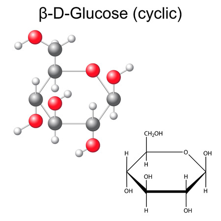 Structural chemical formula and model of glucose - beta-D-glucose, 2d and 3d illustration, vector, isolated on white background  Illustration