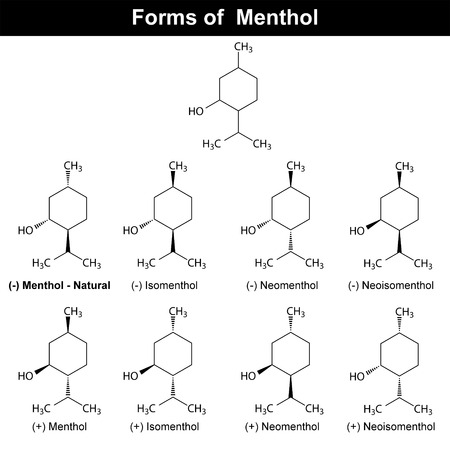 Stereoisomers of menthole molecule -  food and pharmaceutical additive, chemical structural formulas, 2d vector Illustration
