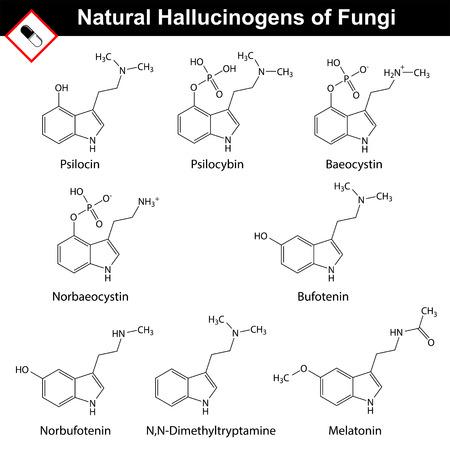 hallucinogen: Natural tryptamine hallucinogens - baeocystin, norbaeocystin, psilocin, psilocybin, melatonin, bufotenin, norbufotenin, DMT. Molecular chemical models, 2d vector, isolated on white background Illustration