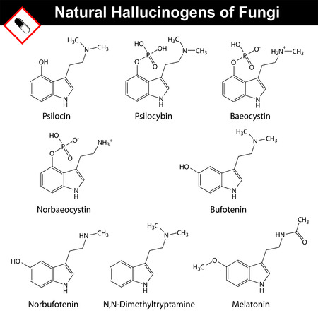 Natural tryptamine hallucinogens - baeocystin, norbaeocystin, psilocin, psilocybin, melatonin, bufotenin, norbufotenin, DMT. Molecular chemical models, 2d vector, isolated on white background Illustration