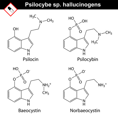 Natural tryptamine Psilocybe sp. alkaloids - baeocystin, norbaeocystin, psilocin, psilocybin. Molecular chemical models, 2d vector, isolated on white background