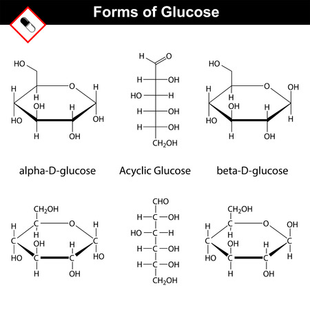 glucose: Glucose molecules. Structural chemical formulas of cyclic and acyclic forms, 2d vector, isolated on white background, eps 8 Illustration