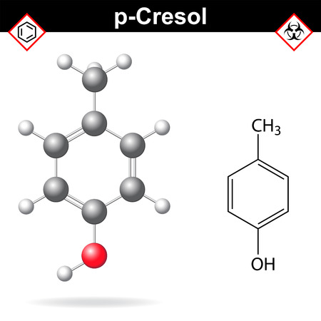 structural: Cresol molecule - structural chemical formula and model of para-cresol, 2d and 3d isolated on white background, vector, eps 8
