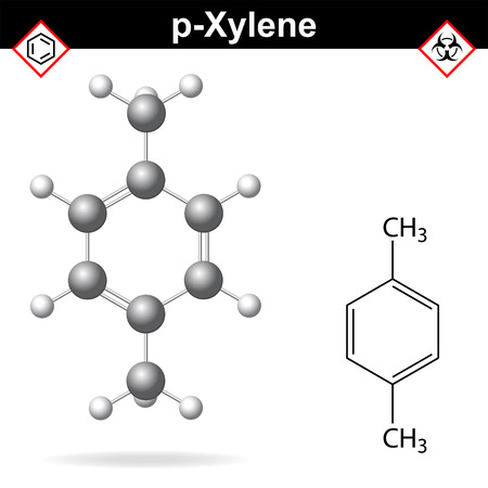 derivative: Xylene molecule - structural chemical formula and model of para-xylene, 2d and 3d isolated on white background, vector, eps 8