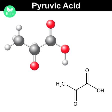 Brenztraubensäure-Molekül, Pyruvat, chemische Strukturformel und Modell, 2D-und 3D-Vektor, isoliert auf weißem Hintergrund Standard-Bild - 44980529