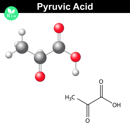 Pyruvic acid molecule, pyruvate, structural chemical formula and model, 2d and 3d vector, isolated on white background