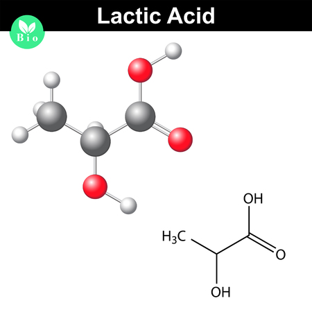 Lactic acid molecule, lactate, structural chemical formula and model, 2d and 3d vector, isolated on white background Ilustracja