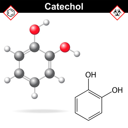 carcinogenic: Catechol - chemical formula and model, 2d and  3d vector isolated on white background, ball and stick style Illustration