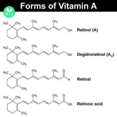 Forms of vitamin A - retinol, dehydroretinol, retinal and  retinoic acid, molecular formulas, 2d vector, eps 8