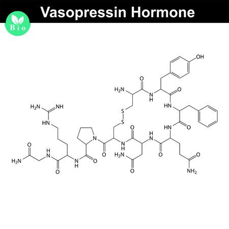 hormone: Vasopressin  hormone 2d structural formula, vector model of molecule