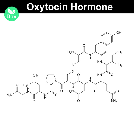 Oxytocin  hormone 2d structure, vector model of molecule