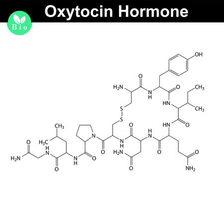 oxytocin: Oxytocin  hormone 2d structure, vector model of molecule