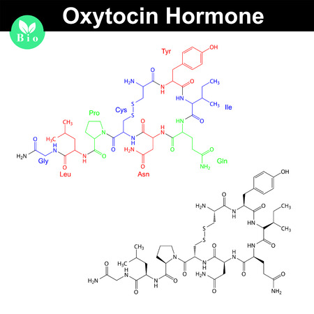 oxytocin: Oxytocin hormone molecule with marked amino acid components, 2d vector model