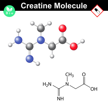 chemical structure: Creatine formula, chemical structure, molecule of muscle metabolism, 2d & 3d vector