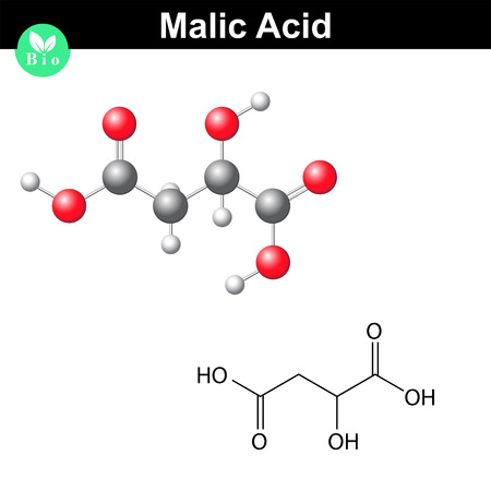 structural: Malic acid molecule, malate, structural chemical formula and model, 2d & 3d vector, isolated on white background, eps 8