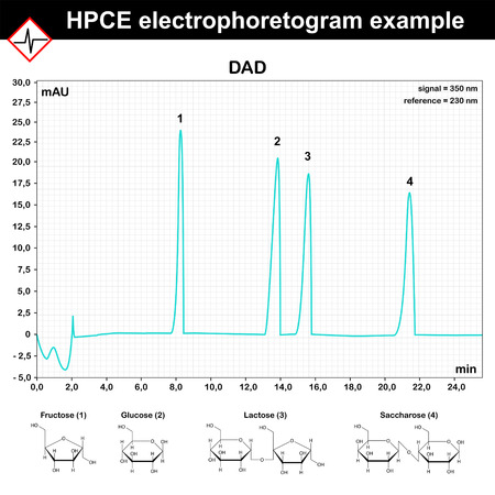electrophoresis: HPCE - high performance capillary electrophoresis electrophoretogram example, 2d scientific vector, eps 8
