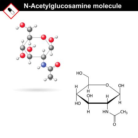 N-Acetylglucosamin NAG Molekül und Modell - Komponente von Hyaluronsäure und Chitin, strukturelle chemische Formeln, 2d Vektor, isoliert auf weißem Hintergrund, eps 8 Standard-Bild - 47554244