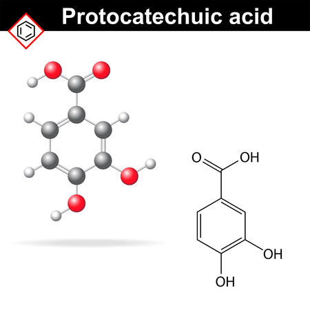 reagent: Protocatechuic acid model and chemical formula, molecular structure vector illustration