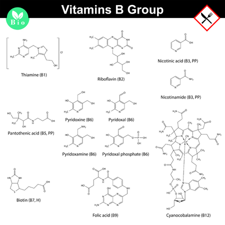biotin: Vitamins of b group, molecular structures