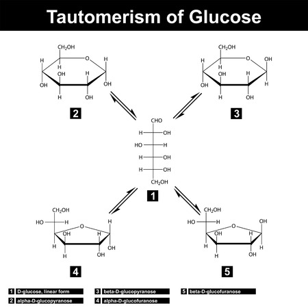 glucose: Tautomerism of glucose, different sugar forms