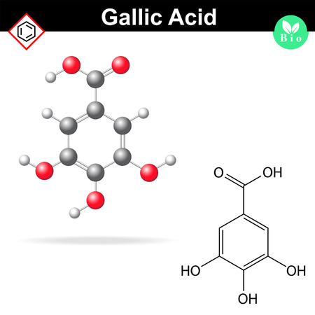 ferment: Gallic acid molecule, gallate, structural chemical formula and model, 2d & 3d icon, isolated on white background
