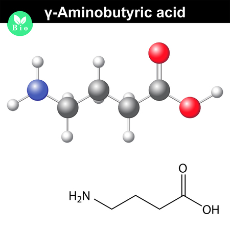 gamma: gamma Aminobutyric acid - synaptic neurotransmitter, chemical structure, 2d and 3d illustration, vector on white background Illustration