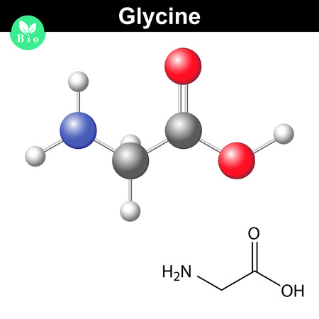 Glycine - main amino acid and inhibitory neurotransmitter, chemical model and molecular structure, 2d and 3d illustration, vector