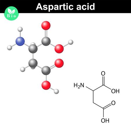 Aspartic acid - main amino acid and neurotransmitter, chemical model and molecular formula, 2d and 3d illustration, vector, eps 8
