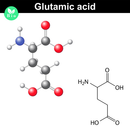 Glutamic acid - main amino acid and neurotransmitter, chemical structure and molecular formula, 2d and 3d illustration