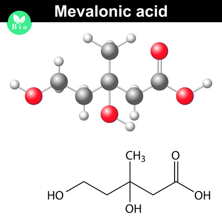 mva: Mevalonic acid molecule - chemical model and molecular formula, 3d lab illustration, vector Illustration