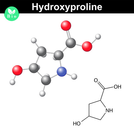 proline: Hydroxyproline non essential heterocyclic amino acid, main collagen compound, 2d and 3d vector illustration, isolated on white background