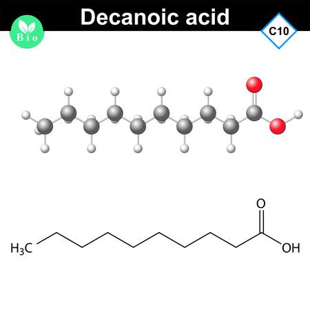 Decanoic acid atomic structure, 2d and 3d vector models, isolated on white background Vektoros illusztráció