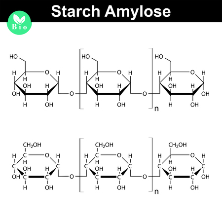 Amylose polymer chemical structure, starch component, chemical illustration, 2d vector, isolated on white background