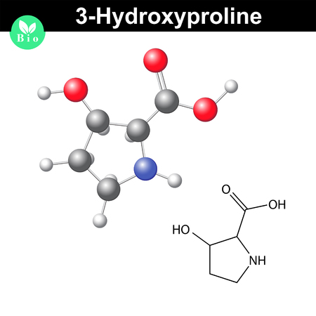 proline: Hydroxyproline non essential heterocyclic amino acid, 3 hydroxyproline - main collagen compound, 2d and 3d vector illustration, isolated on white background