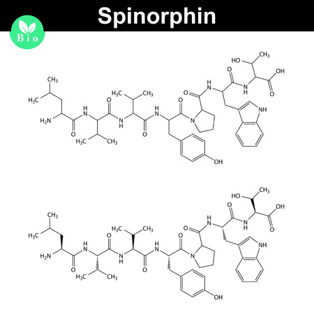 endogenous: Spinorphin chemical structure icons, endogenous opioid peptide, 2d chemical vector icon, isolated on white background