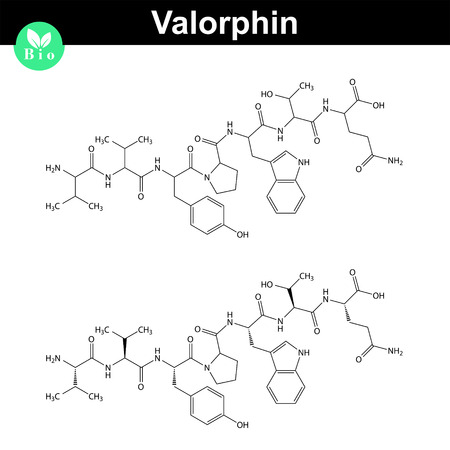 peptide: Valorphin biochemical compound icons, endogenous opioid peptide, 2d chemical vector icon, isolated on white background