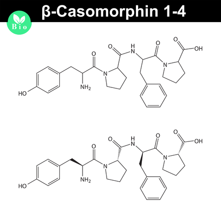 Beta Casomorphin 1-4 molecule illustration, casomorphin class opioid peptide, scientific vector 2d illustration, isolated on white background
