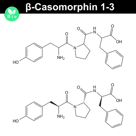 Beta Casomorphin 1-3 molecular structure, casomorphin class opioid peptide, scientific vector 2d illustration, isolated on white background 矢量图像