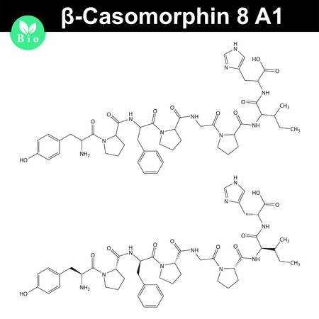 Beta Casomorphin 5 molecular structure, casomorphin class opioid peptide, casein part, scientific vector 2d illustration, isolated on white background 矢量图像