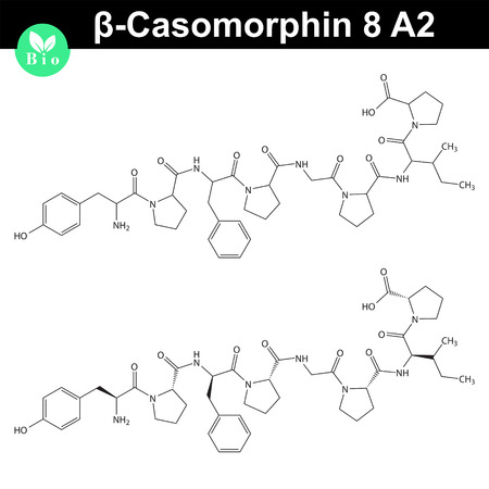Beta Casomorphin 8 A2 chemical structure, casomorphin class opioid peptide, casein part, scientific vector 2d illustration, isolated on white background 矢量图像