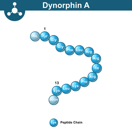 Dynorphin A abstract model, amino acid sequence, scientific 3d vector illustration in ball style, isolated on white background