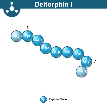 Deltorphin I exogenous opioid peptide chemical structure, ball sequence style, 3d vector illustration, isolated on white background