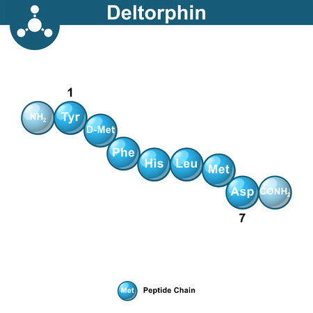 Deltorphin exogenous opioid peptide chemical structure, ball sequence style, 3d vector illustration, isolated on white background