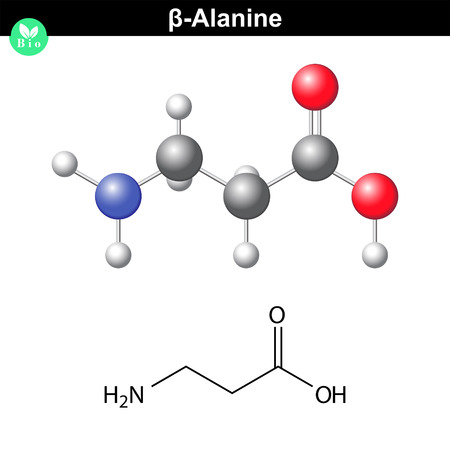 beta- Alanine molecular structure, structural chemical formula and model of beta fmino acid, 2d and 3d scientific vector illustration, isolated on white background