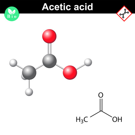 Structural chemical formula and molecular structure of acetic acid molecule, 2d and 3d vector illustration Illustration