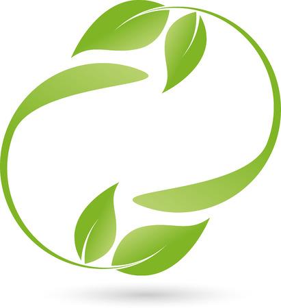 balsam: Leaves , organic, plant, Naturopaths