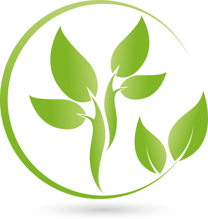 energy healing: Plant, Leaves , Bio, Naturopaths Illustration