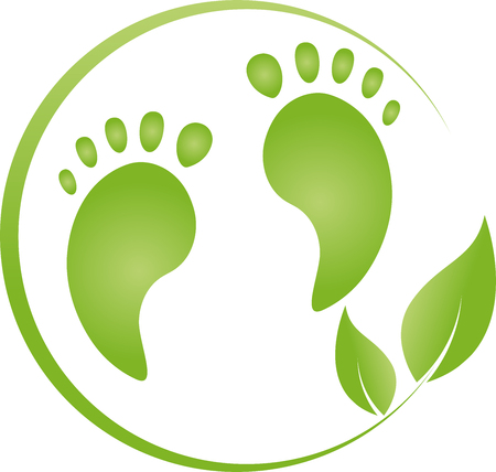 Two feet and plant, footcare, illustration